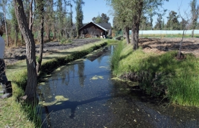 Resultado de imagen para Diputado local pide ayuda para salvar áreas protegidas de Xochimilco