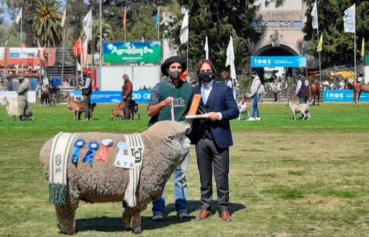 Expo Prado presume lo mejor de la ganadería uruguaya