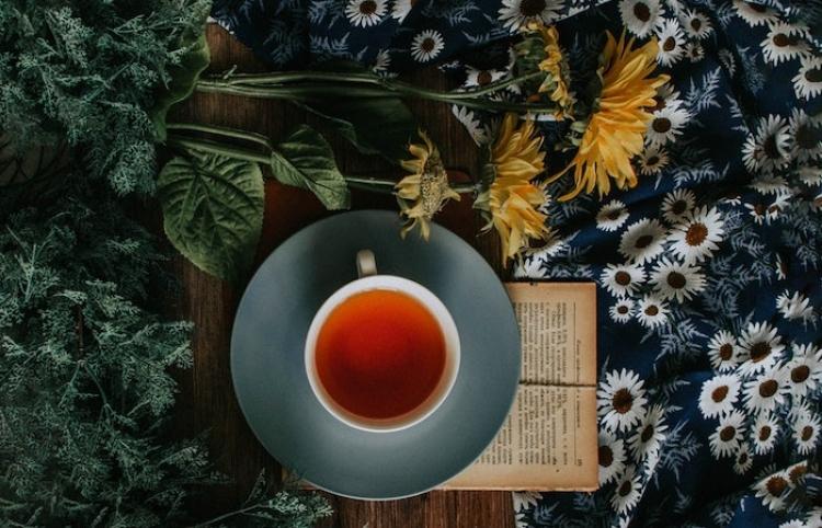 Como perder peso de manera eficaz con el té rooibos; estas son sus propiedades