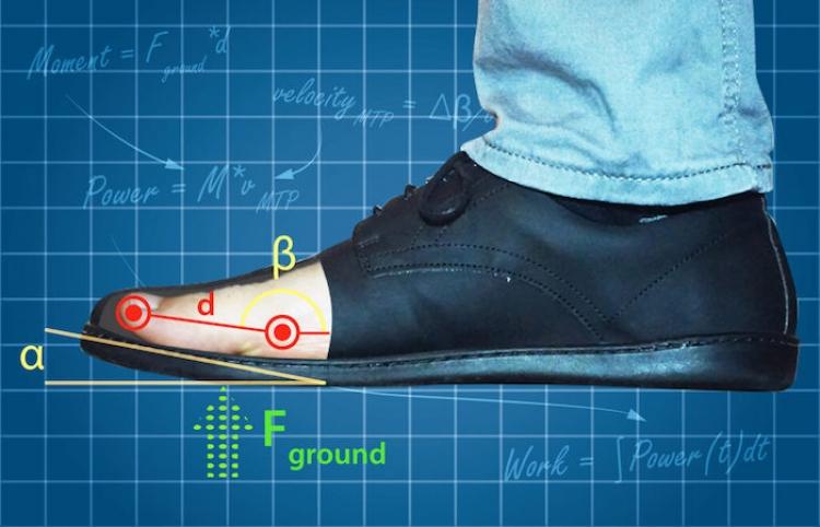 Investigadores de Harvard dan conclusión de acuerdo al calzado que utilizas